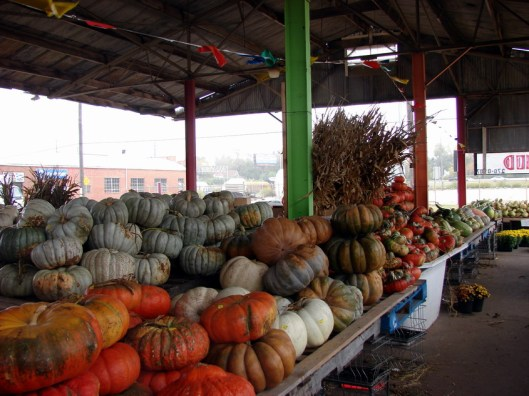 A Trip to an Urban Pumpkin Wonderland